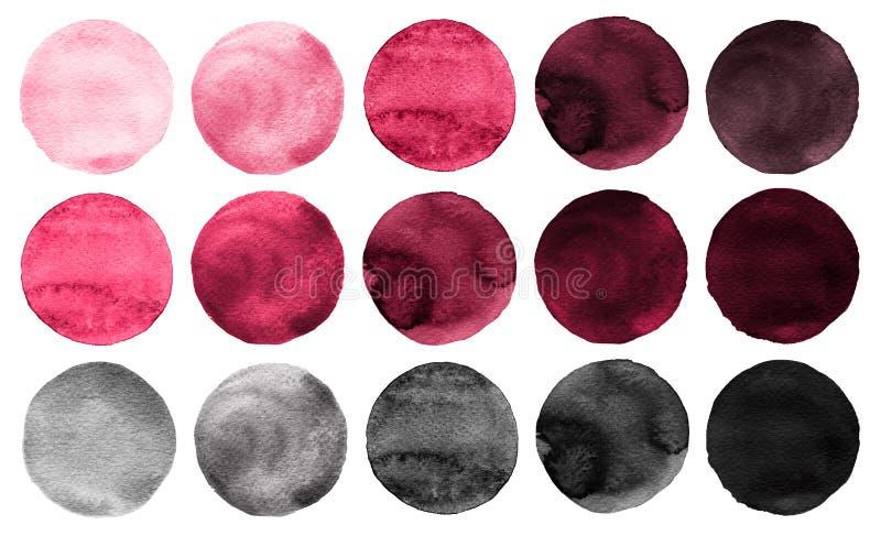 L'aquarelle entoure le rose de collection, couleurs grises illustration libre de droits