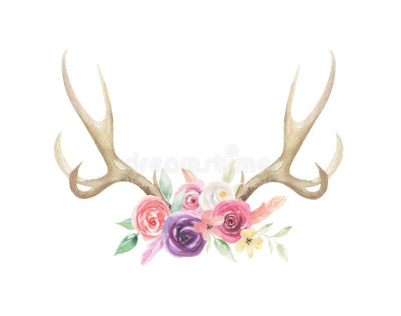 L'aquarelle fleurit l'os floral de klaxons de mâle de cerfs communs d'andouillers peint illustration de vecteur