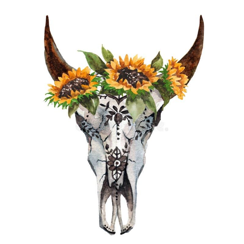 L'aquarelle a isolé la tête du ` s de taureau avec des fleurs et des plumes sur le fond blanc Style de Boho Crâne pour s'envelopp illustration de vecteur
