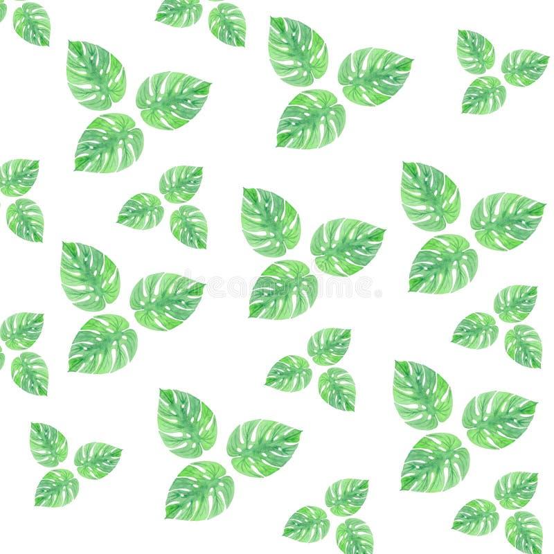 L'aquarelle laisse à isolement de modèle de vert d'été le papier peint de dessin doux illustration libre de droits