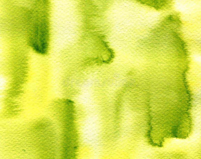 L'aquarelle verte olive de lumière abstraite éclabousse, des baisses, fond de calomnies de brosse Texture peinte à la main pour d illustration stock