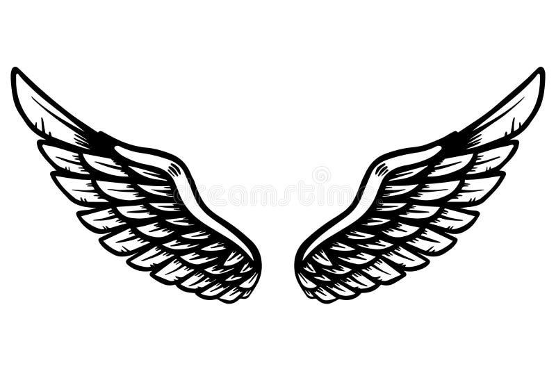 L'aquila disegnata a mano traversa l'illustrazione volando isolata su fondo bianco Progetti l'elemento per il manifesto, la carta illustrazione vettoriale