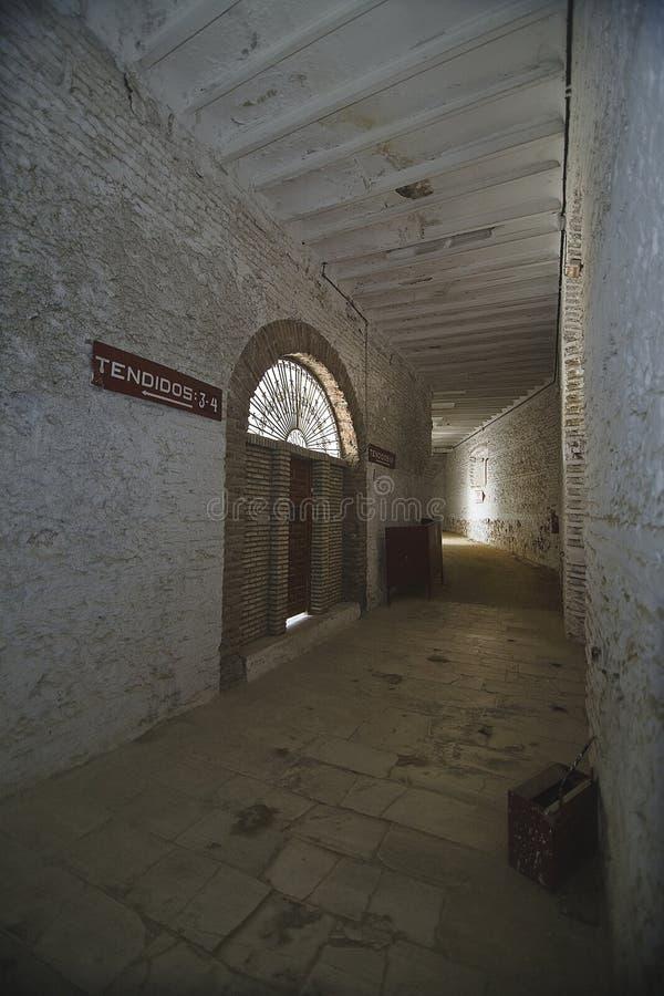 L'arène province de Cabra, Cordoue, Andalousie, Espagne photographie stock libre de droits