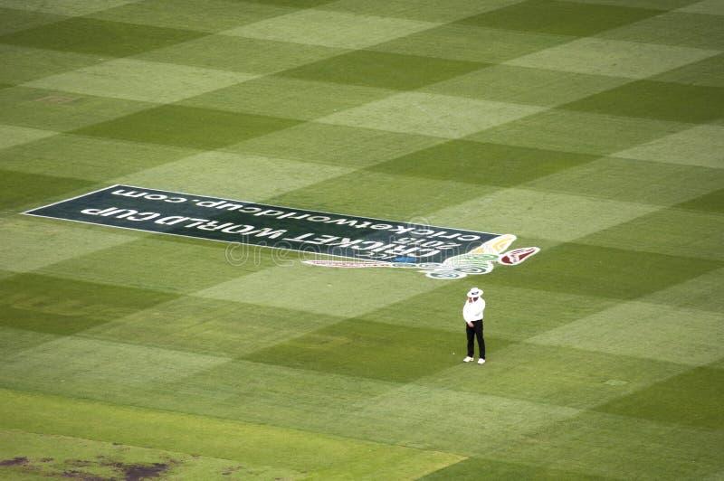L'arbitre seul se tient dans le match de cricket au magnétocardiogramme images libres de droits