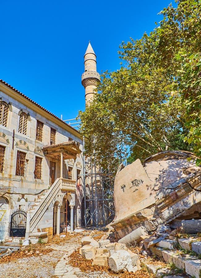 L'arbre de la mosquée de Hippocrate et de Gazi Hassan Kos, Grèce photos stock