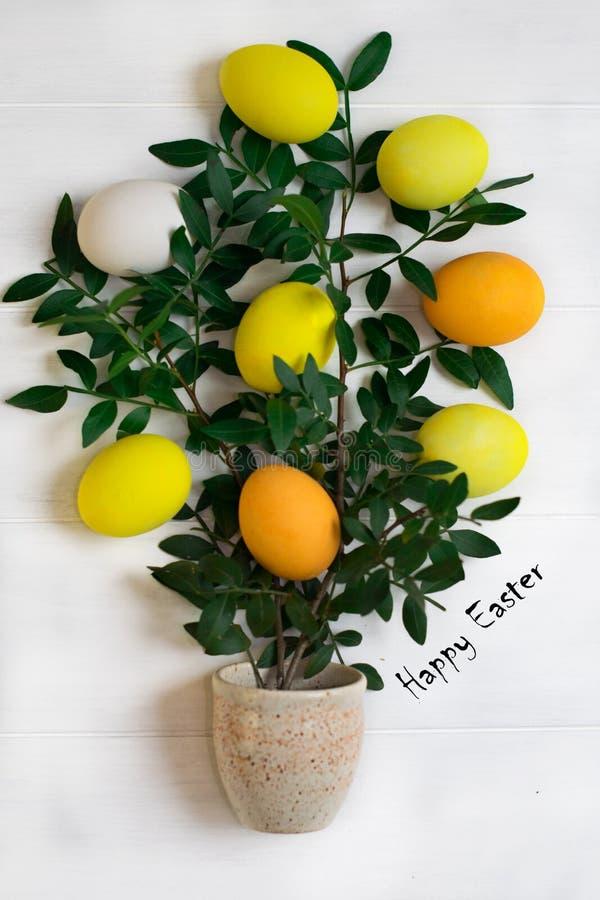 L'arbre de Pâques avec les oeufs de pâques multicolores sur un fond blanc avec le ressort vert s'embranche images stock