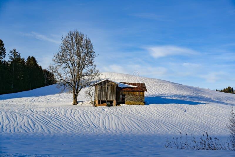 L'arbre et la grange isolés dans la neige ont couvert le paysage de la Bavière, Allemagne photographie stock