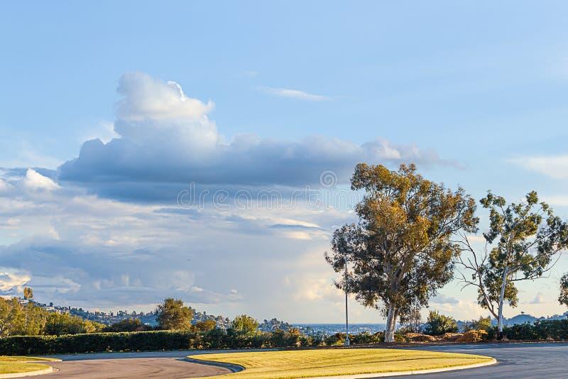 L'arbre a rayé le scape de négligence de ville d'entraînement de pelouse avec le ciel bleu et le cloudscape image libre de droits