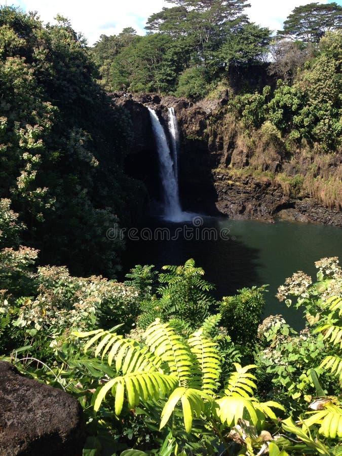 L'arc-en-ciel tombe surveillance Hilo, Hawaï photo libre de droits