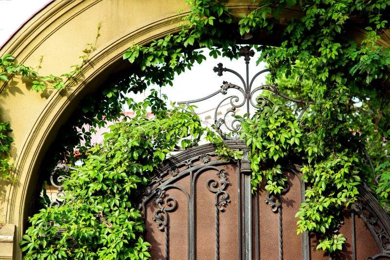 L'arco del portone dell'entrata al palazzo fotografia stock libera da diritti