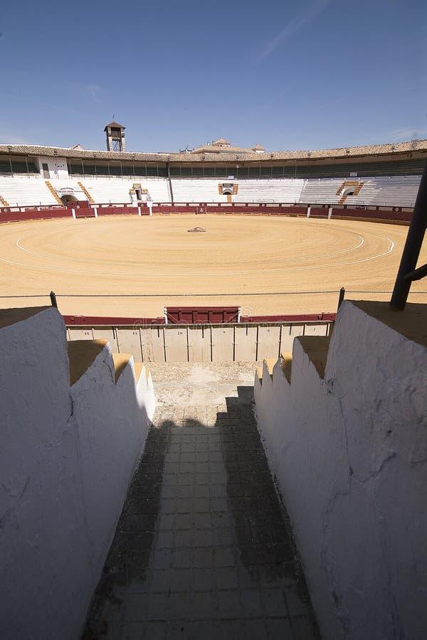 L'arena provincia di Cabra, Cordova, Andalusia, Spagna fotografie stock