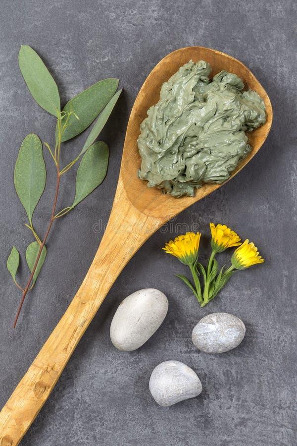 L'argilla ed il fiore ed il ramo cosmetici dell'eucalyptus, pietre, per i trattamenti della stazione termale, in cucchiaio di leg fotografie stock