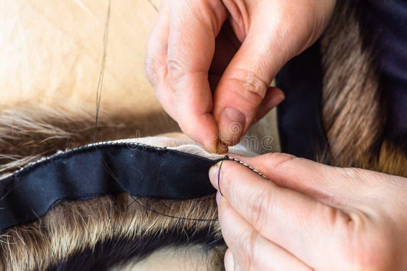 L'artigiano cuce i cuoii della pelliccia dalla fine dell'ago su fotografia stock