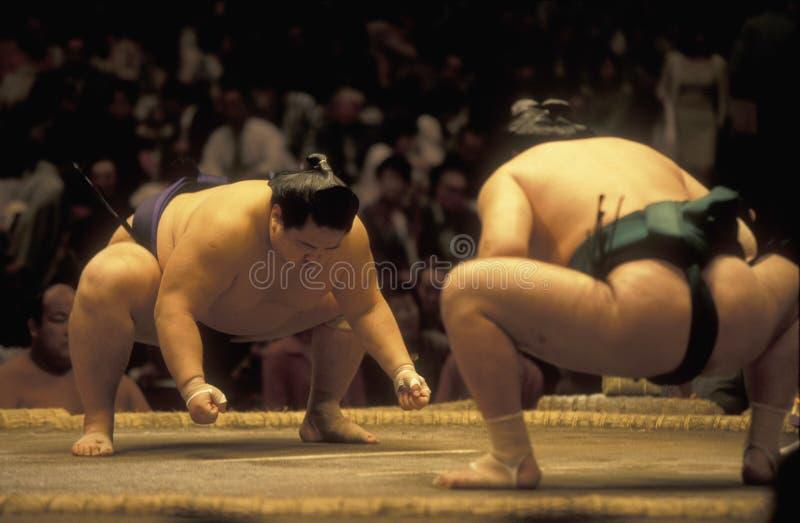 L'ASIA GIAPPONE TOKYO fotografia stock