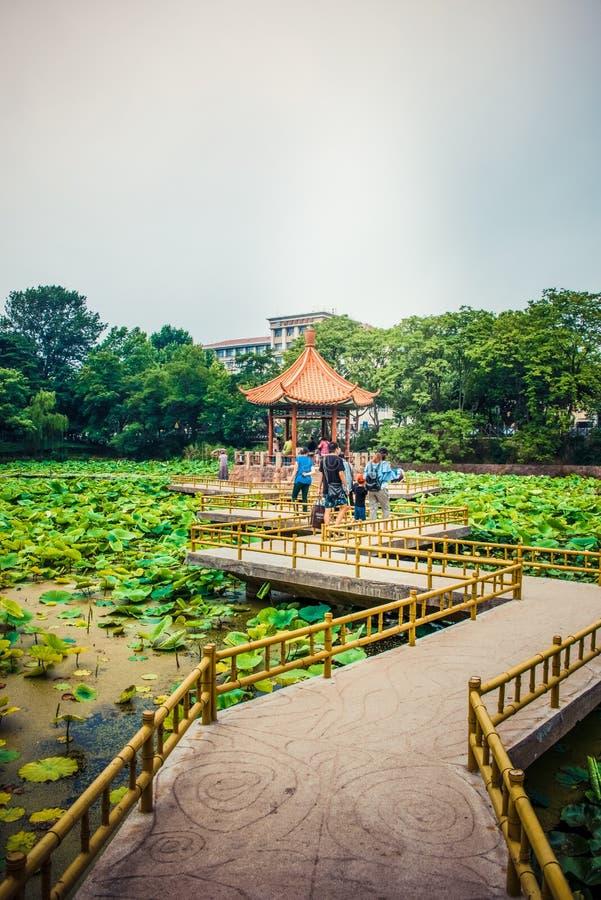 L'Asia parco di Cina, Qingdao, Shandong, Zhongshan fotografie stock