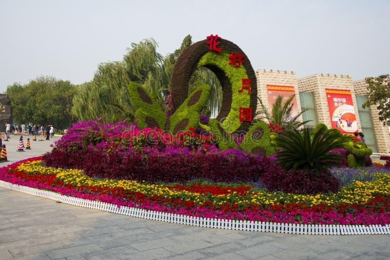 L'Asie Chine, Tianjin, parc aquatique, lit de fleur de paysage photos libres de droits