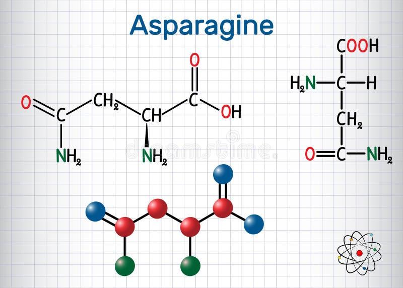 L-asparagina da asparagina, Asn, molécula do ácido aminado de N IS-IS usou-se na biosíntese das proteínas Folha de papel em uma g ilustração royalty free