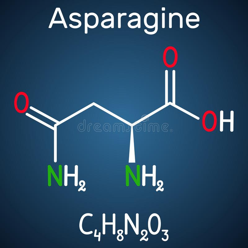 L-asparagina da asparagina, Asn, molécula do ácido aminado de N IS-IS usou-se na biosíntese das proteínas Produto químico estrutu ilustração do vetor