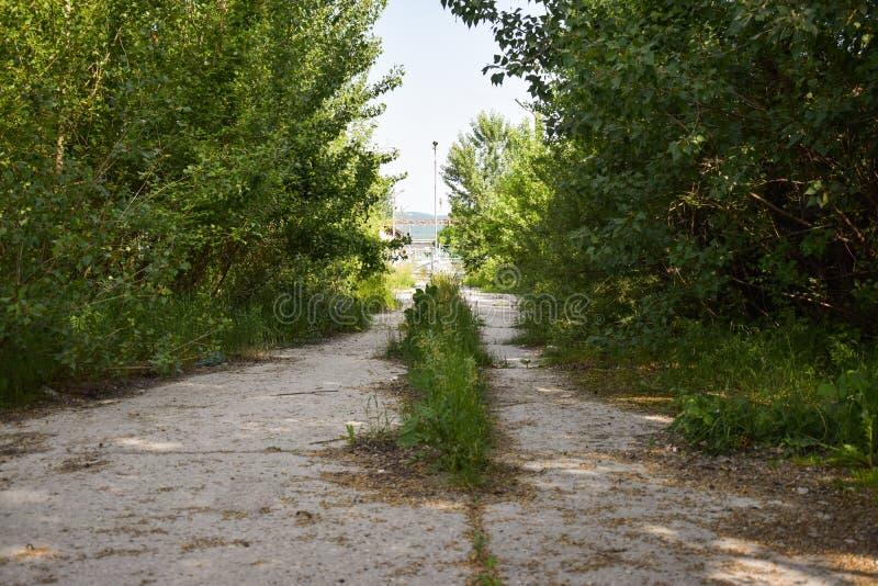 L'asphalte abandonné a fendu la route avec les usines et l'herbe envahies au milieu de nulle part dans une certaine ville de fant photo libre de droits