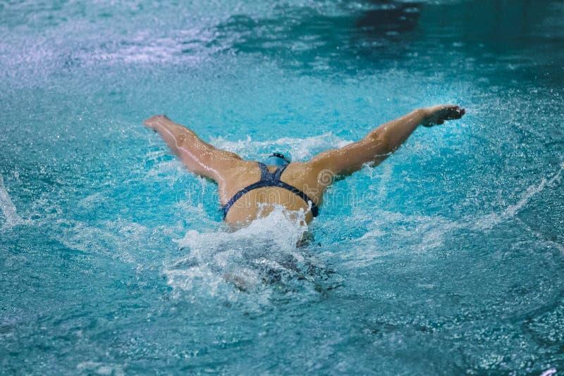 L'atleta della ragazza nuota il punto di vista della farfalla dalla parte posteriore immagini stock