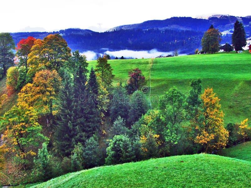 L'atmosphère d'automne sur des pâturages et des collines dans le Thur River Valley photographie stock