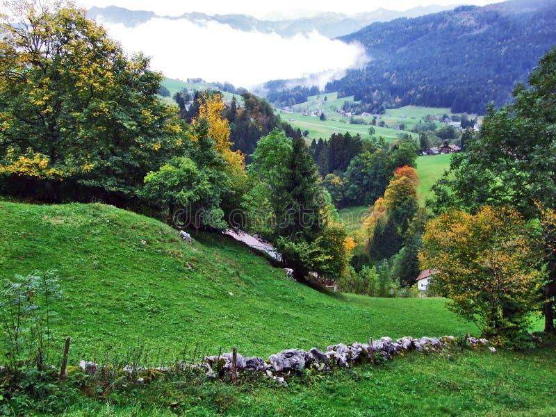 L'atmosphère d'automne sur des pâturages et des collines dans le Thur River Valley photographie stock libre de droits