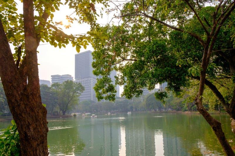 L'atmosphère de l'étang en parc photo stock