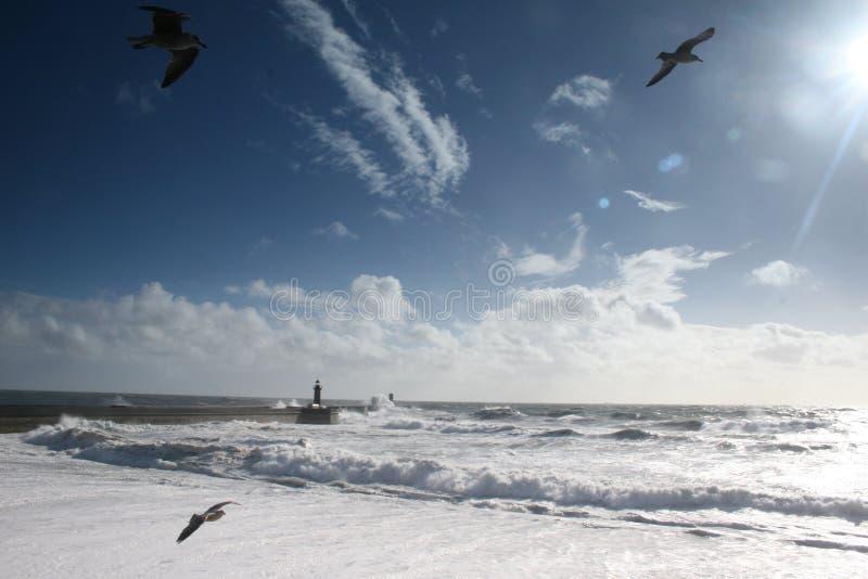 L'atmosphère maritime photo stock