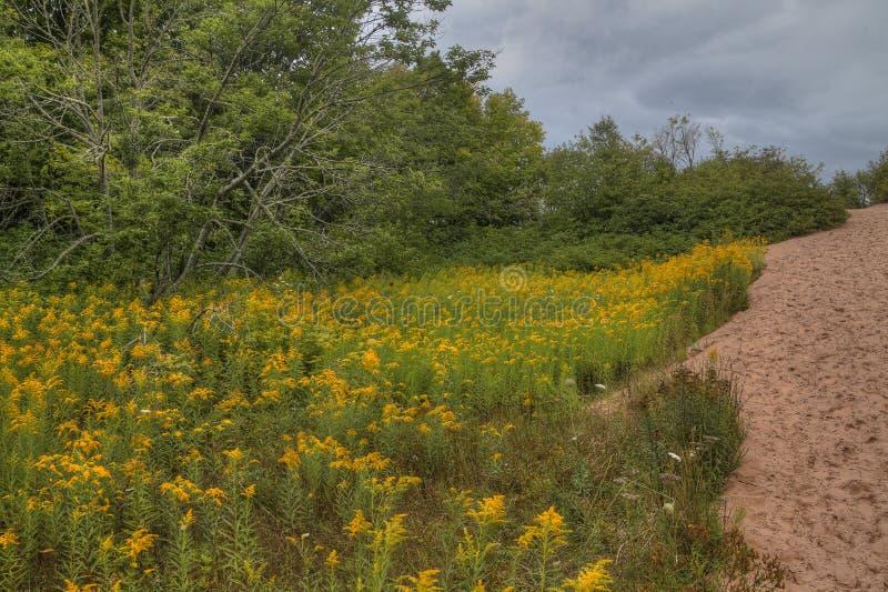 L'au bord du lac national peint de roches au Michigan supérieur a une grande variété d'attractions image stock