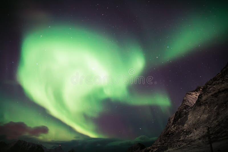 L'aurore au-dessus de Lofoten, Norvège photos libres de droits