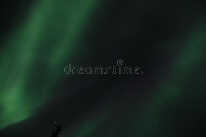 L'aurore en Alaska photos libres de droits