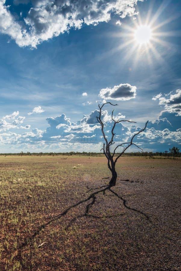 L'Australia al tramonto su una chiara sera del ` s di inverno nel Territorio del Nord, immagini stock