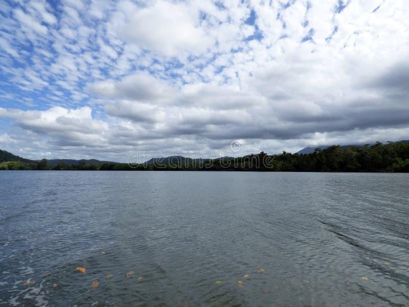 L'Australia, parco nazionale di Daintree fotografia stock