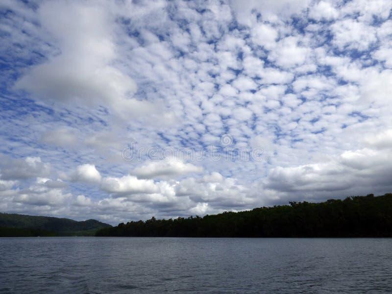 L'Australia, parco nazionale di Daintree fotografie stock libere da diritti
