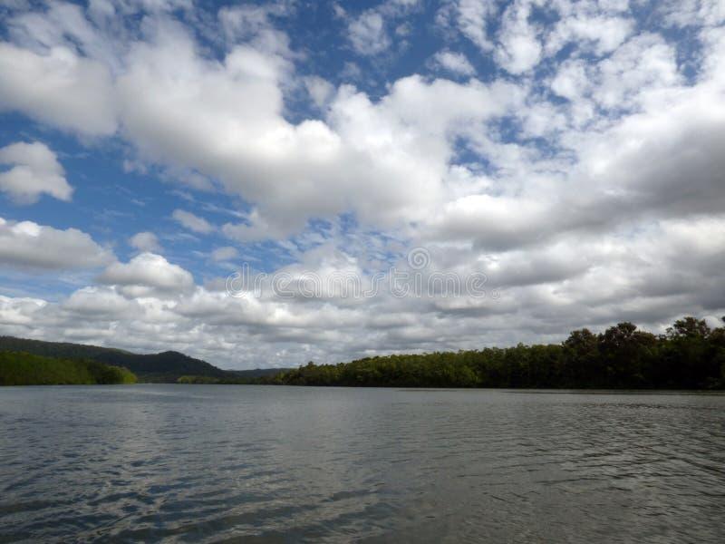 L'Australia, parco nazionale di Daintree fotografia stock libera da diritti