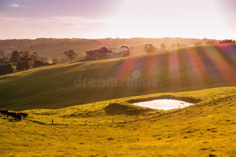 L'Australia rurale immagini stock