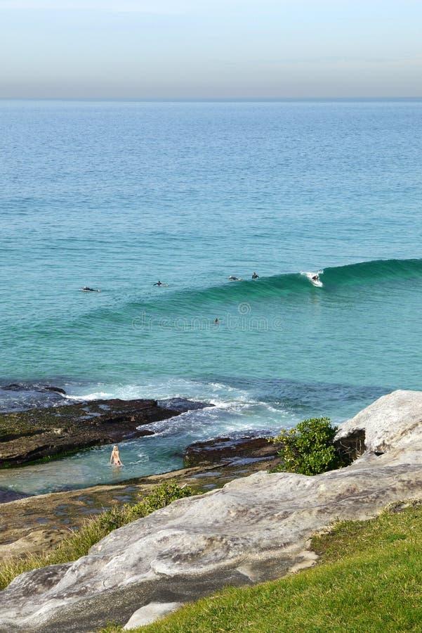 L'Australia: Spiaggia di Tamarama con i surfisti ed i nuotatori immagini stock libere da diritti
