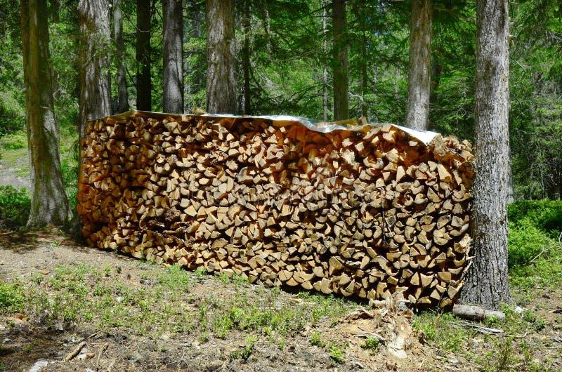 L'Austria, Tirolo, silvicoltura fotografie stock libere da diritti
