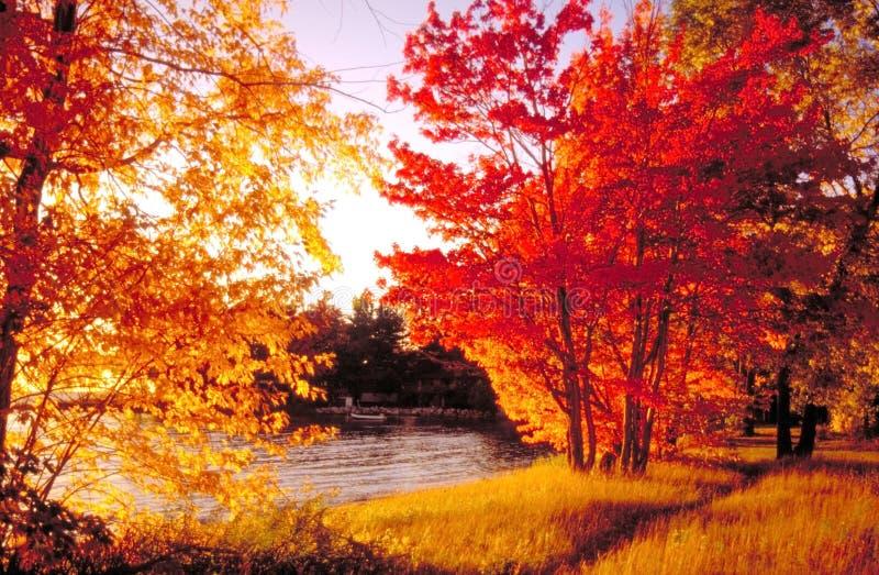 L'automne colore le compartiment du nord photos libres de droits