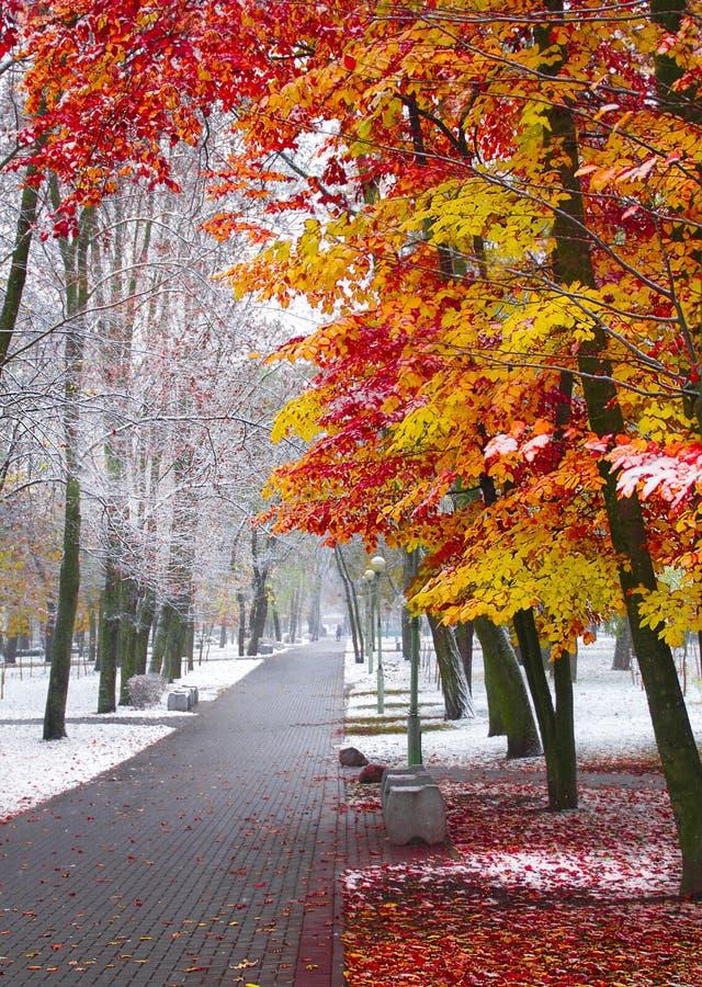 L'automne contacte l'hiver photographie stock libre de droits