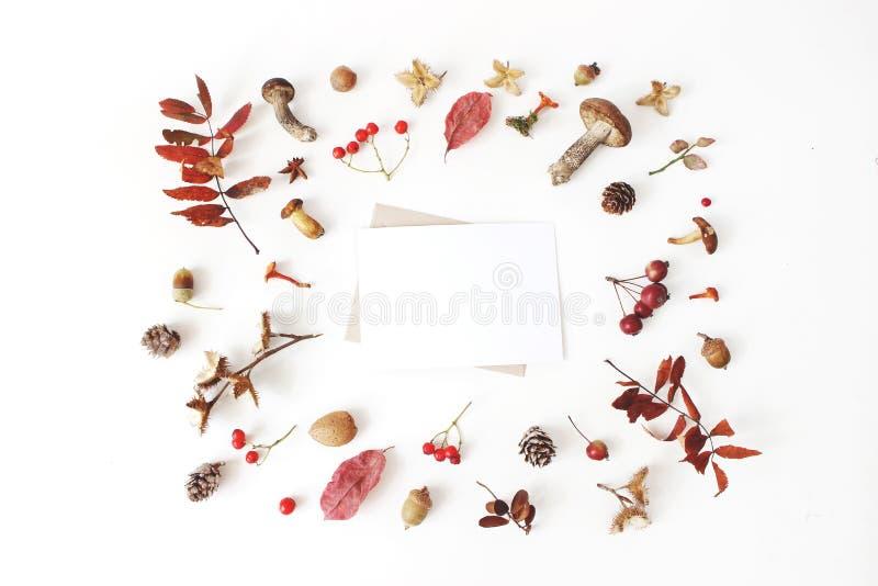 L'automne a dénommé la disposition botanique Scène de maquette de carte vierge Composition des champignons, cônes de pin, faînes, photos stock