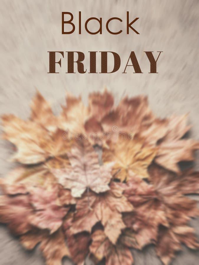 L'automne d'érable de Black Friday a défraîchi le fond sec de feuilles photos libres de droits