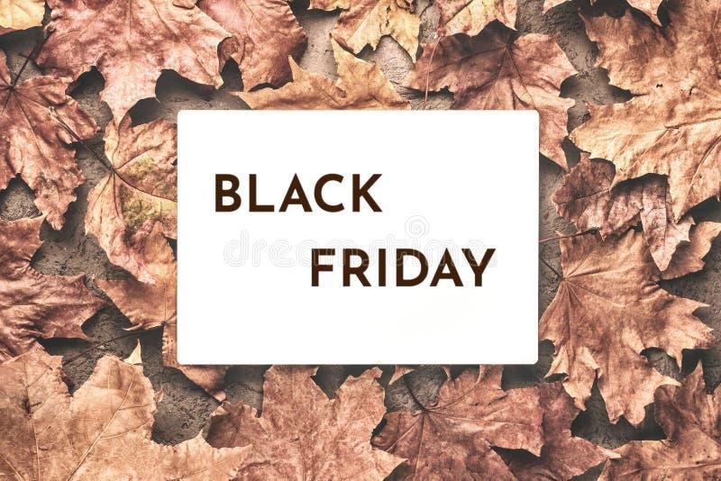 L'automne d'érable de Black Friday a défraîchi le fond sec de feuilles photographie stock libre de droits