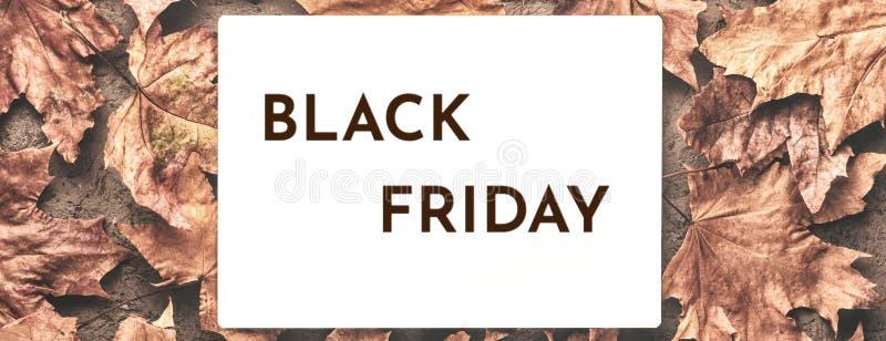 L'automne d'érable de Black Friday a défraîchi le fond sec de feuilles images libres de droits