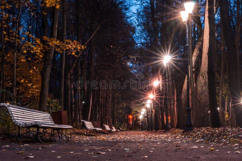 L'automne dans le jardin de Neskuchny photographie stock