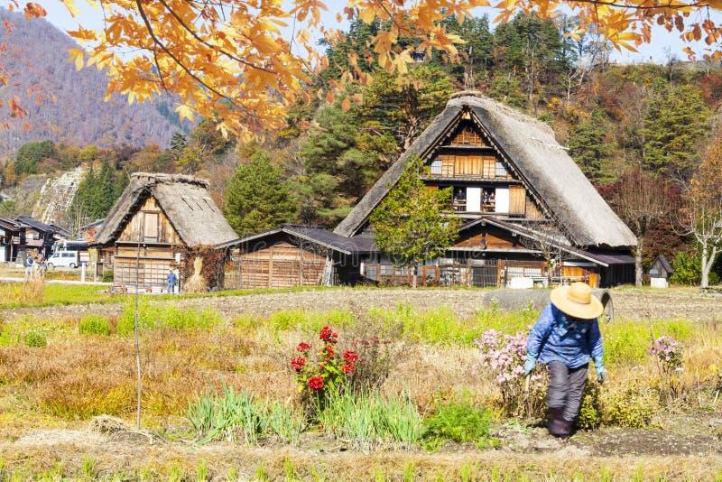 L'automne des villages historiques de Shirakawa-vont et Gokayama, J photographie stock libre de droits