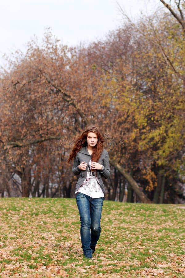 L'automne disparaissent photos libres de droits