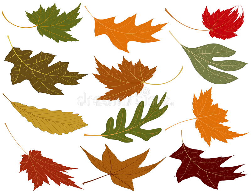 l'automne enflé laisse le vent illustration libre de droits