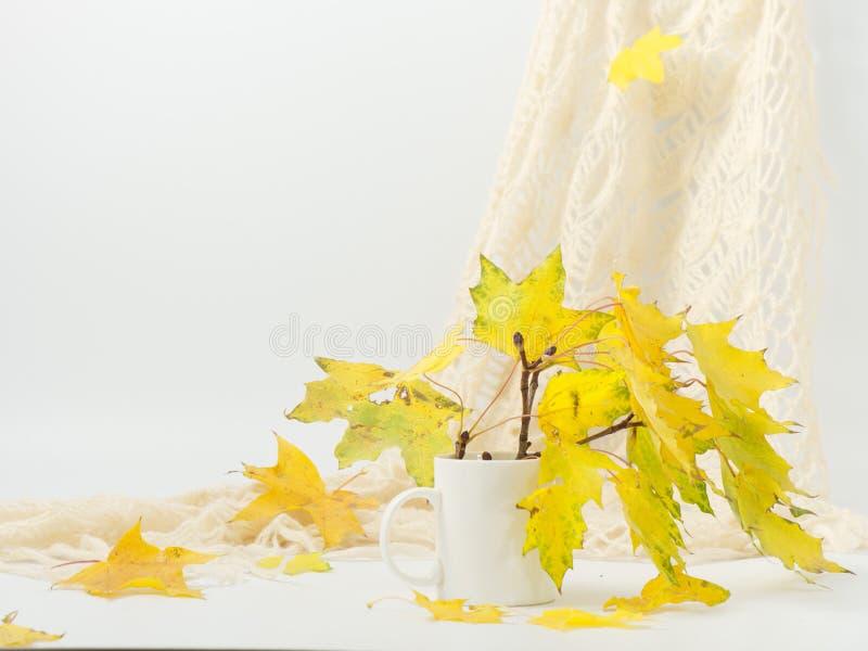 L'automne jaune laisse la vie sur fond blanc image stock
