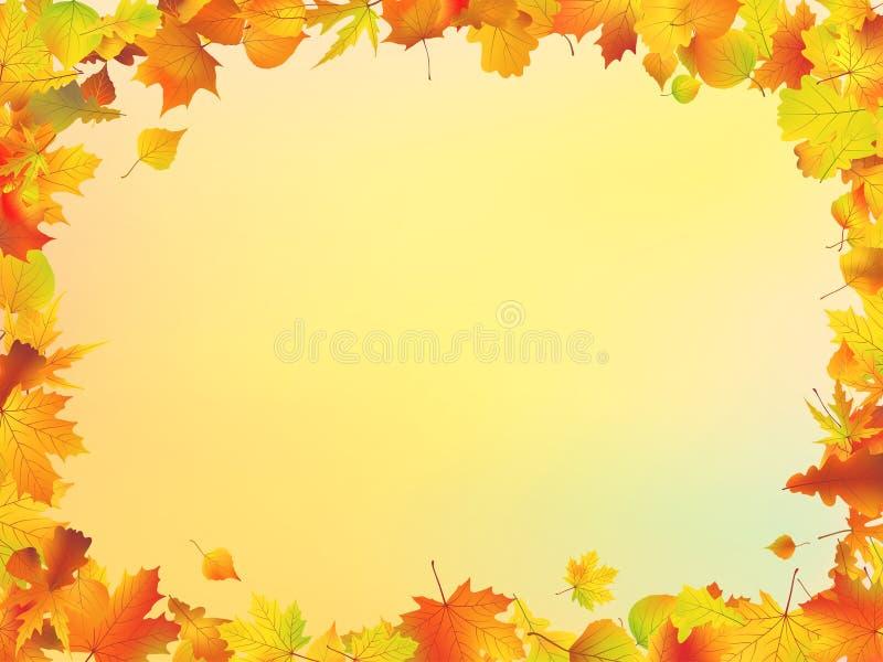 L'automne laisse la trame illustration de vecteur